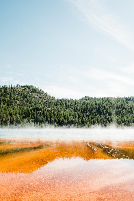 Sheena_Shahangian_Photography_Travel_Banff_Jasper_Glacier_Yellowstone_Grand_Teton-48.jpg
