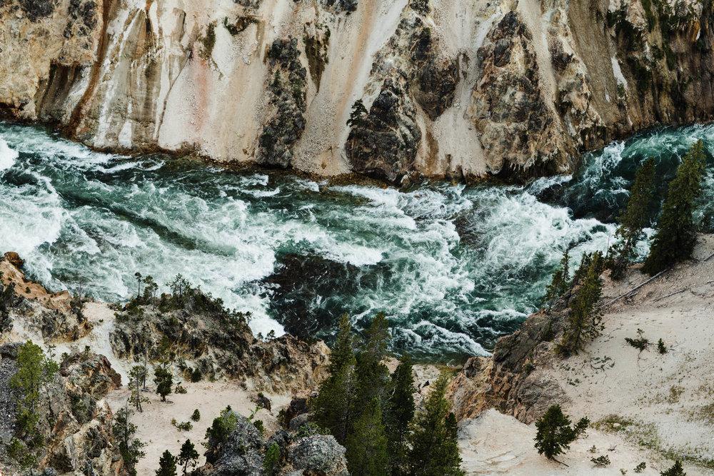 Sheena_Shahangian_Photography_Travel_Banff_Jasper_Glacier_Yellowstone_Grand_Teton-58.jpg
