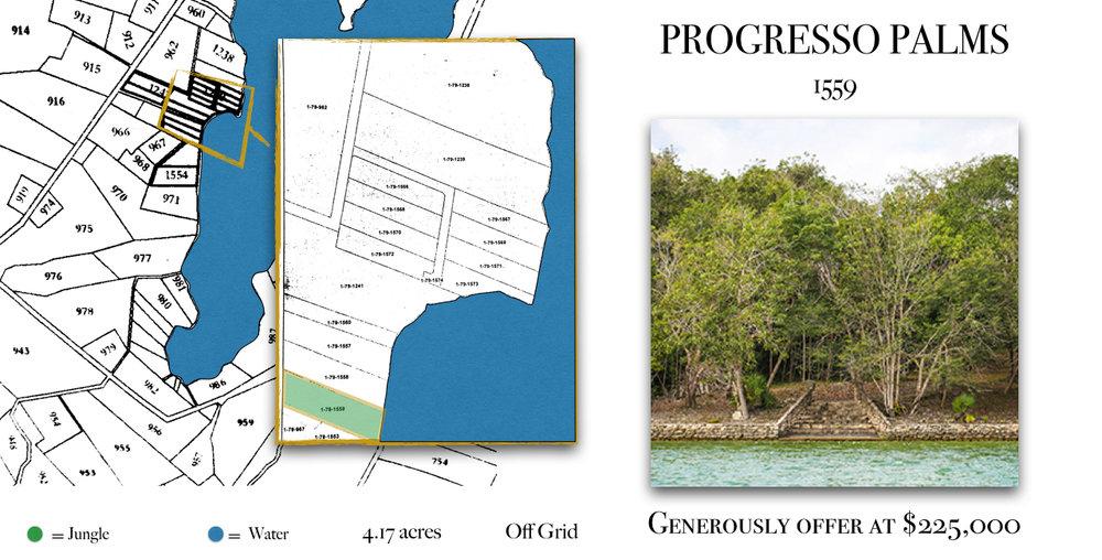 Progresso Palms 1554 Listing.001.jpeg