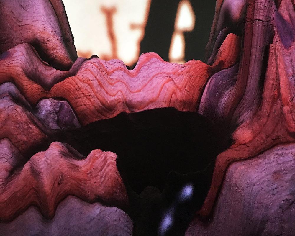 Teratogenesis - landscape detail.jpg