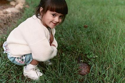 Mr-Turtle.jpg