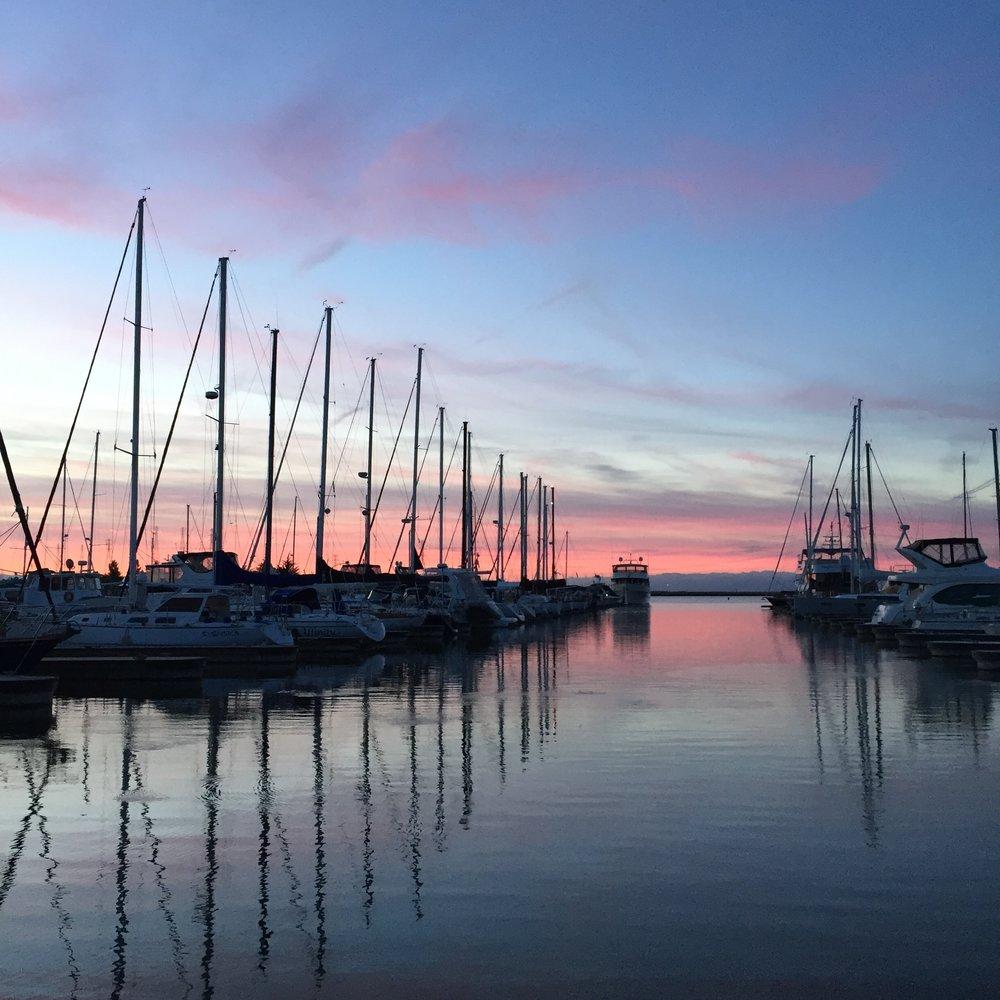 harbor sunsets