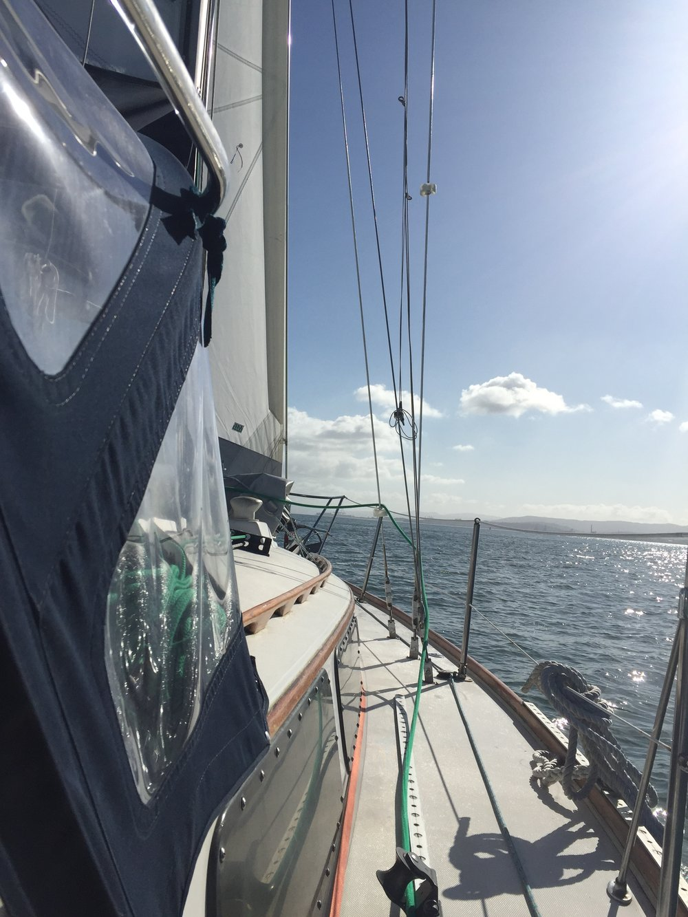 sailing windfola across the sf bay