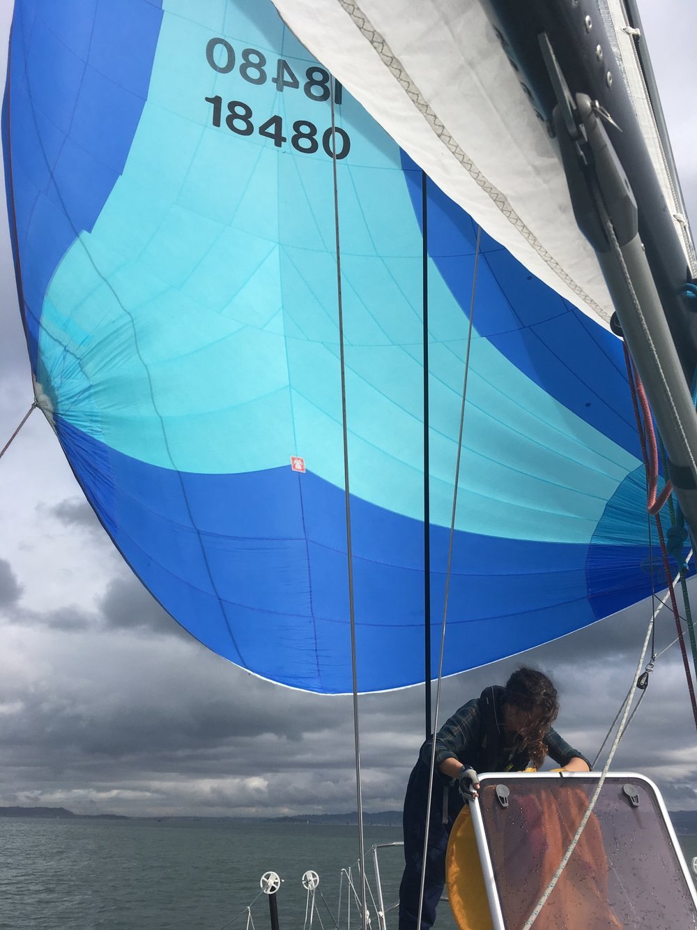 spinnaker racing on the sf bay