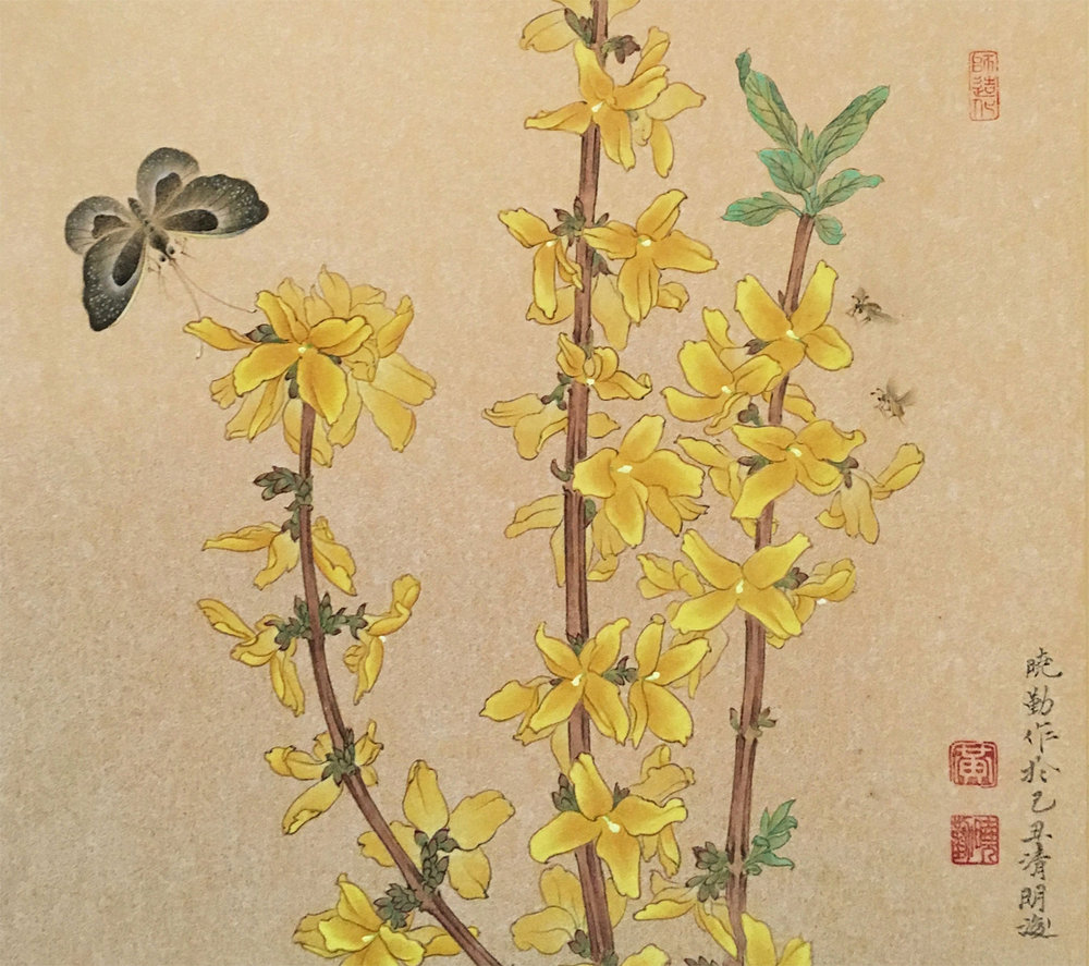 Forsythia, Black Butterfly, and Bees