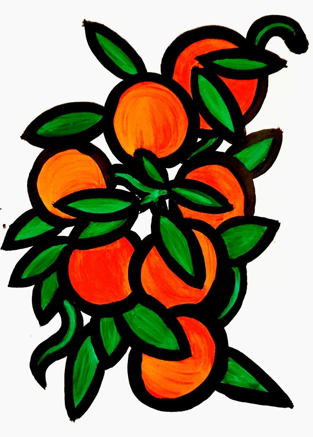 Clementine Study