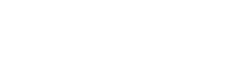 Strategic Diversity Initiatives