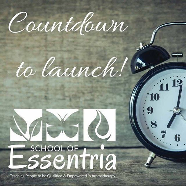 Last day before launch 😜…..are you as excited as we are‼️ This will be the biggest and best aromatherapy school launch ever 😉  My hands are fluttering 👐….I'm so excited, eeek!  Check us out tomorrow for deals!! www.schoolofessentria.com  May April the 4th be with you 🤓  #aromatherapy #aromatherapyschool #aromatherapist #launchingsoon #bestaromaticschool #schoolofessentria