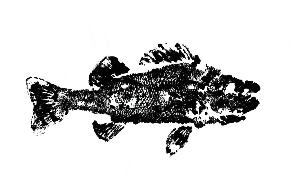 Painted fish bw 300dpi.jpg