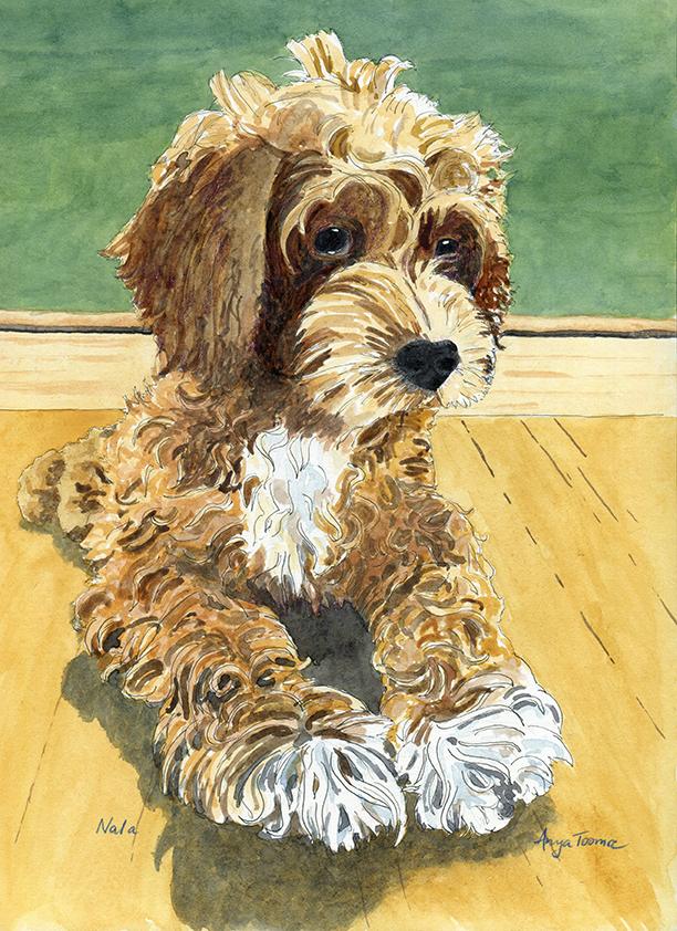 Nala Puppy 2018-11-21 72dpi.jpg