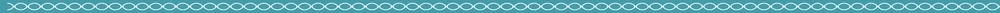 turquoise bar3.jpg