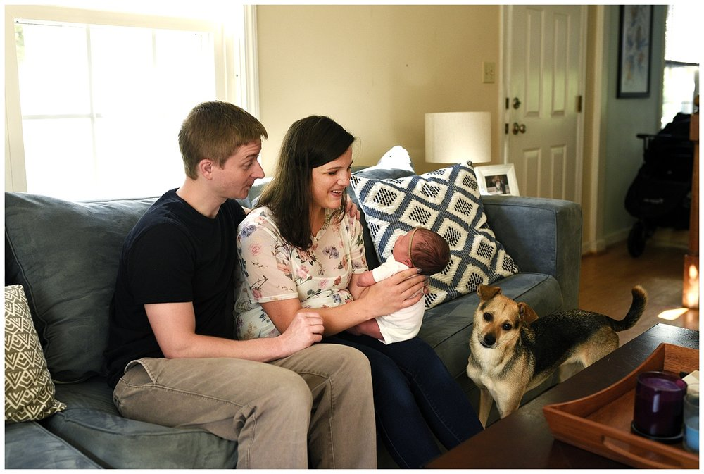 hamden, ct new haven county newborn photography in home. connecitcut newborn