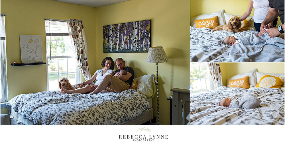 lifestyle newborn photography on bed with dog
