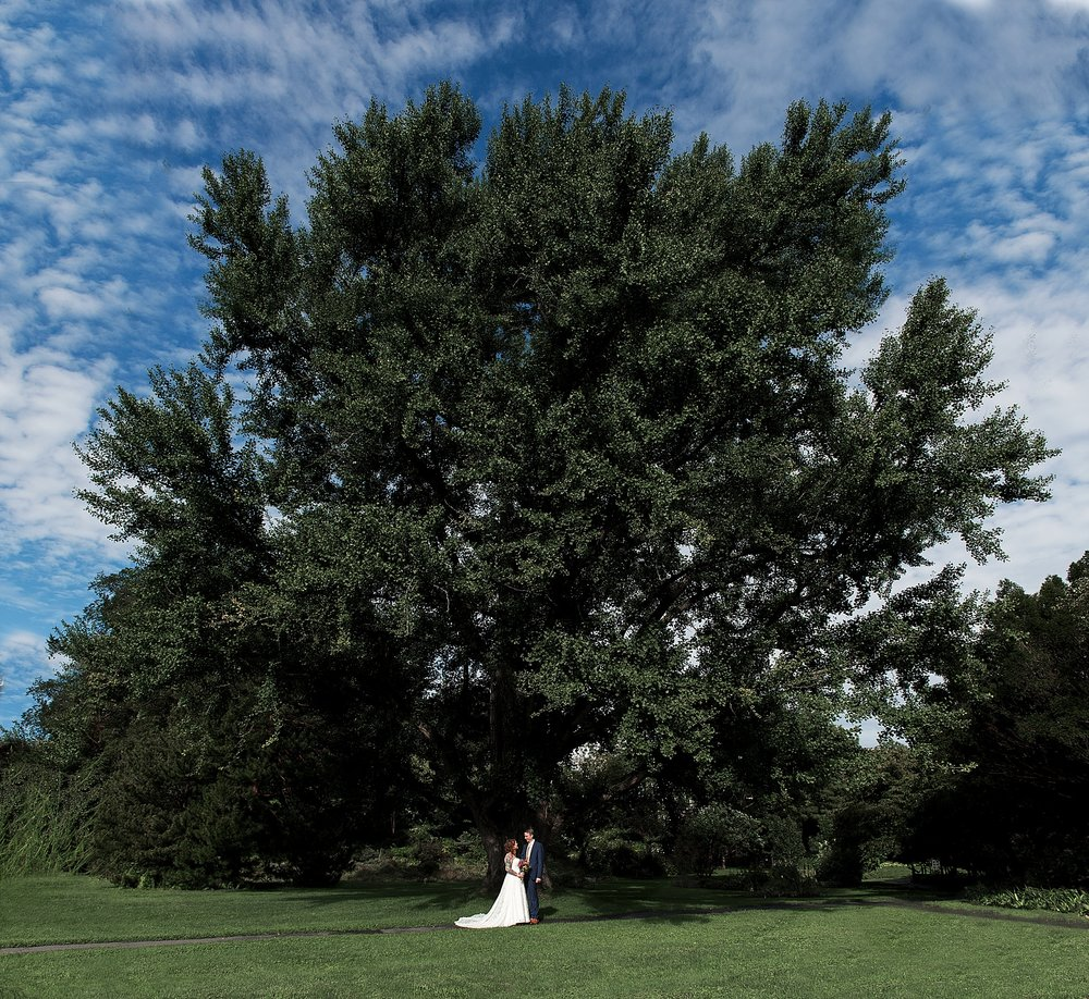 intimate wedding photography by large tree in ct