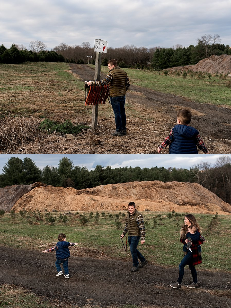 lifestyle family photography at connecticut tree farm