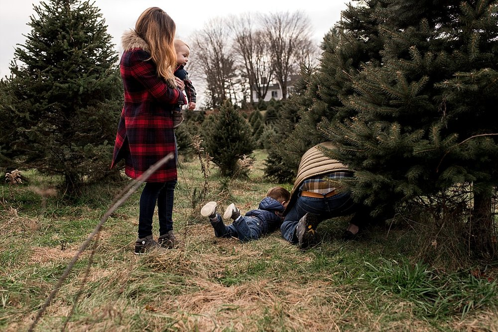 lifestyle family photography at connecticut christmas tree farm