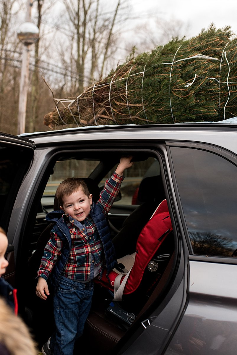 christmas tree farm photography in connecticut