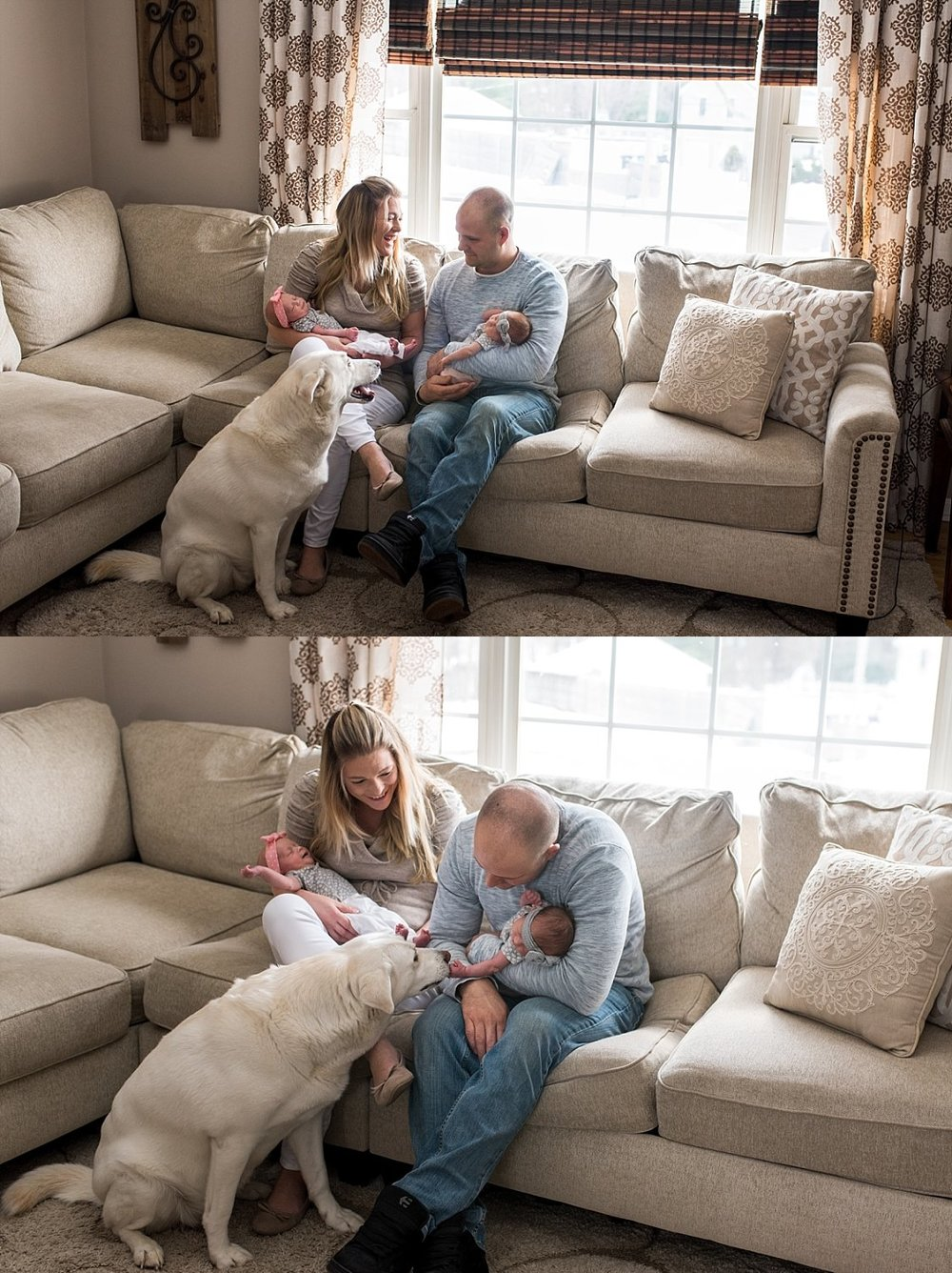 infant twin girls with their dog during at home newborn session in connecticut.