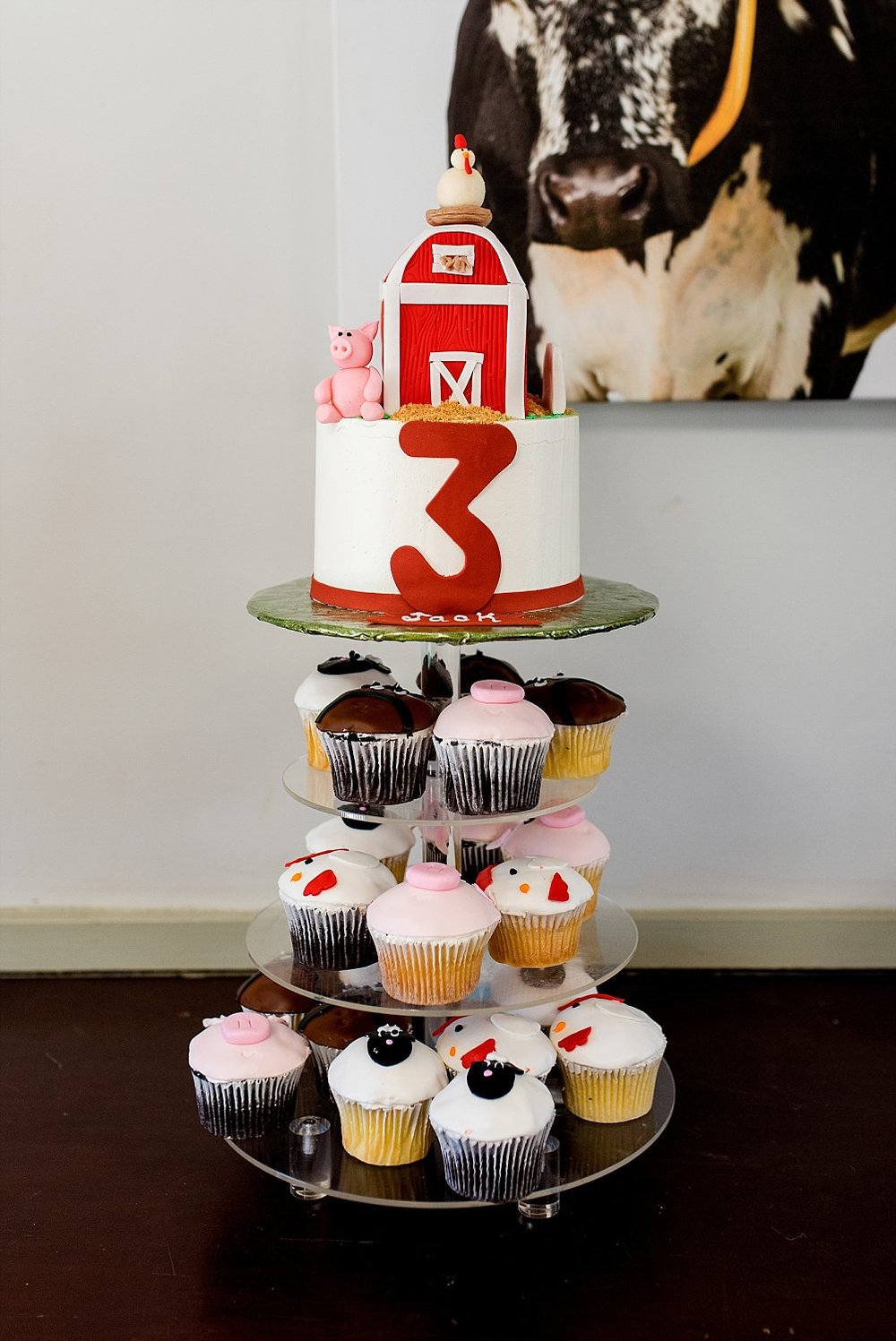 Farm themed cake and cupcakes at Stamford CT birthday party photography