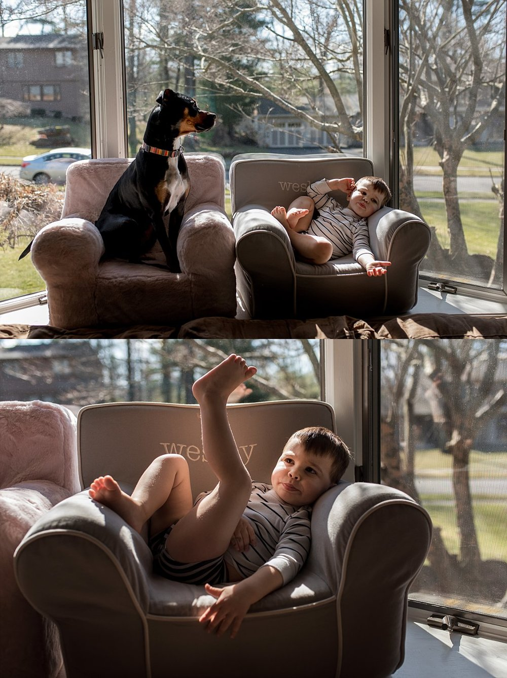a boy and his dog. CT family photographer