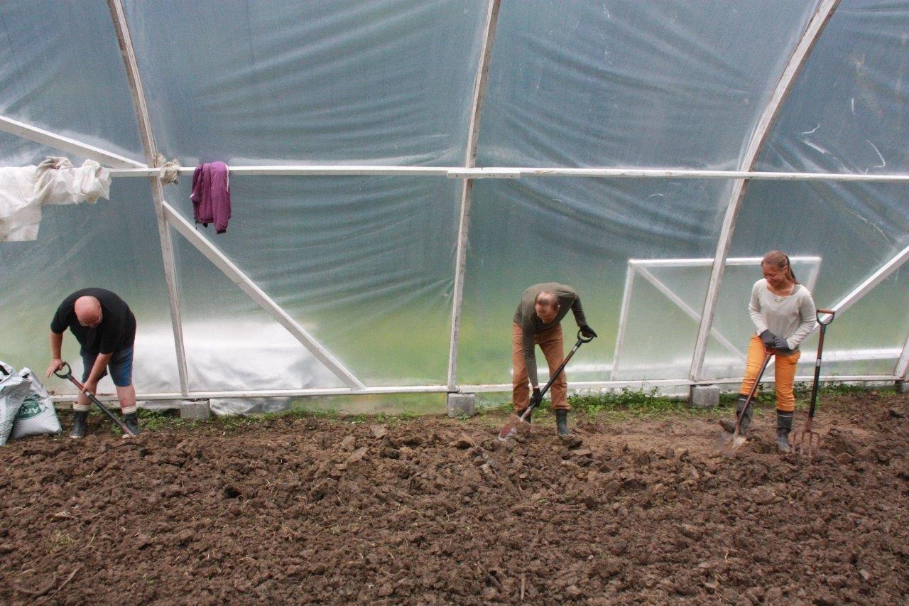 Timo, Ilkka ja Heidi kääntävät kasvihuoneen maapohjaa