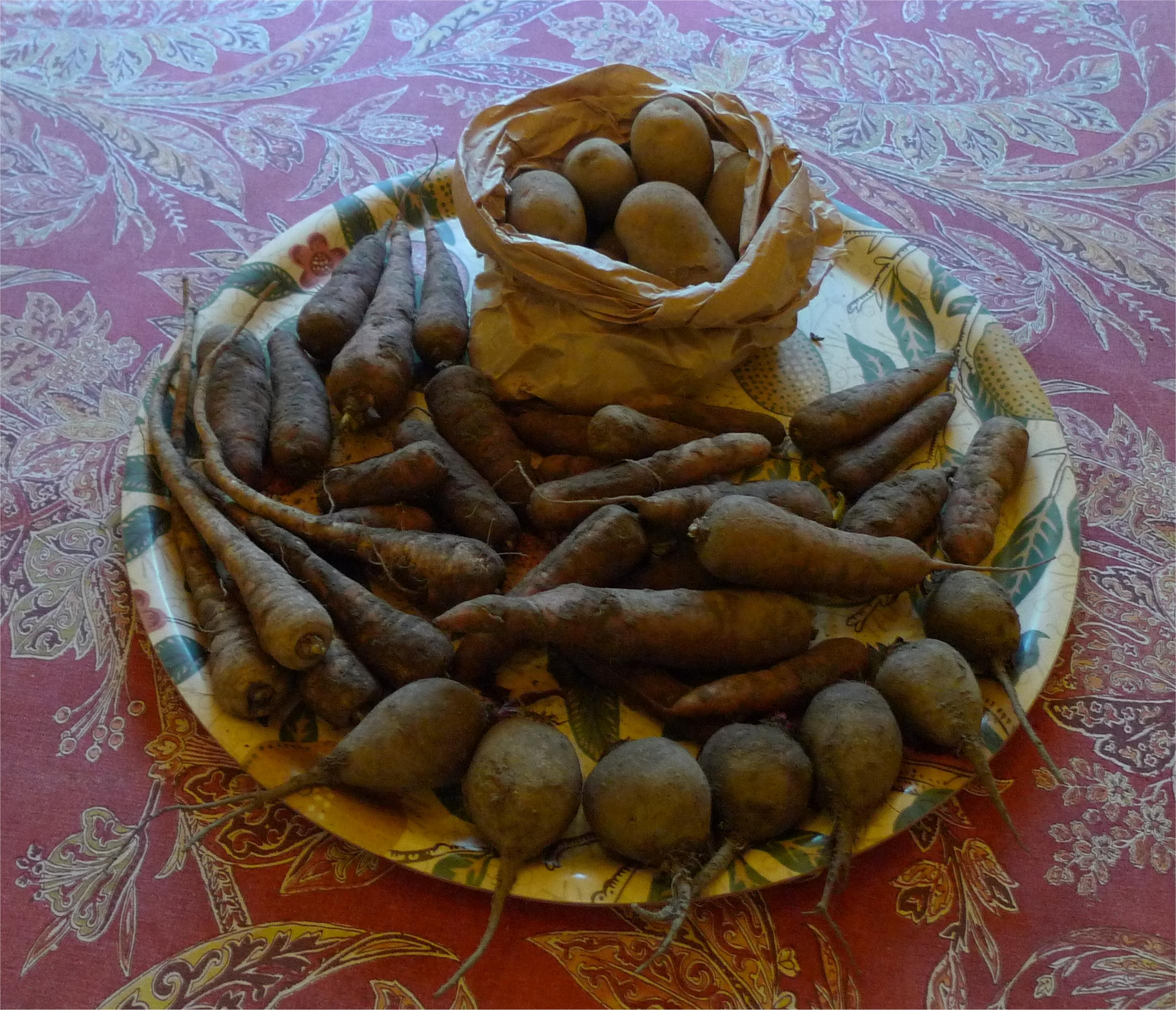 Perunat 1077 g, palsternakat 173 g, punajuuret 365 g ja porkkanat 1163 g.