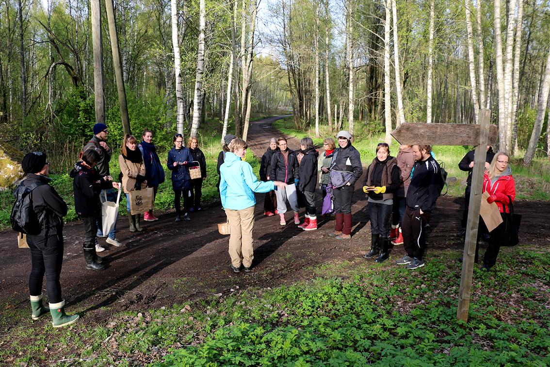 Vuonna 2014 järjestimme muutaman hortoiluretken Herttoniemessä Kaisan opastuksella, kun Kaisa oli työharjoittelussa Ruokaosuuskunnalla. Nyt Kaisalla on oma yritys  Juuret maassa.
