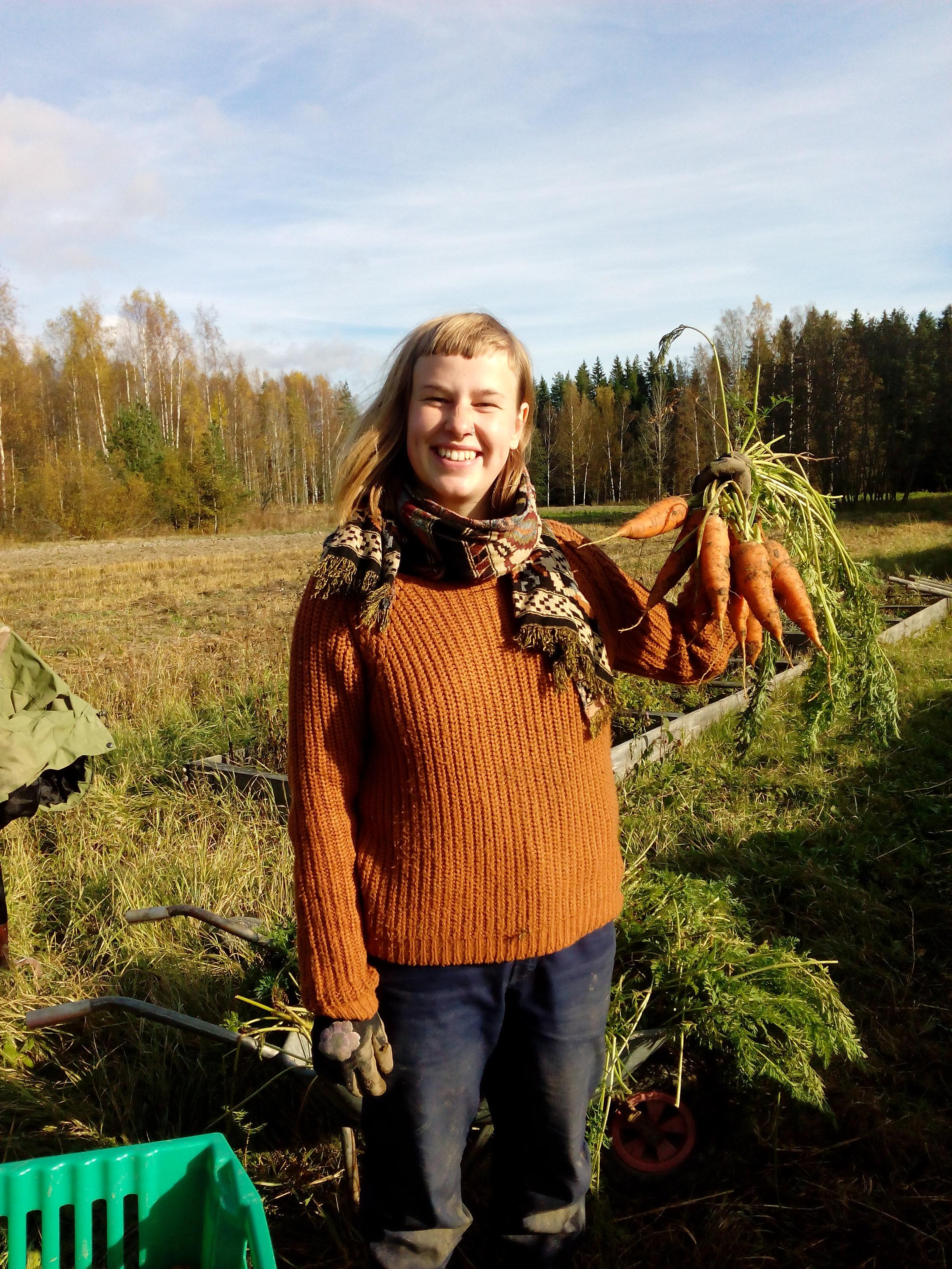 Annika ja porkkanat.