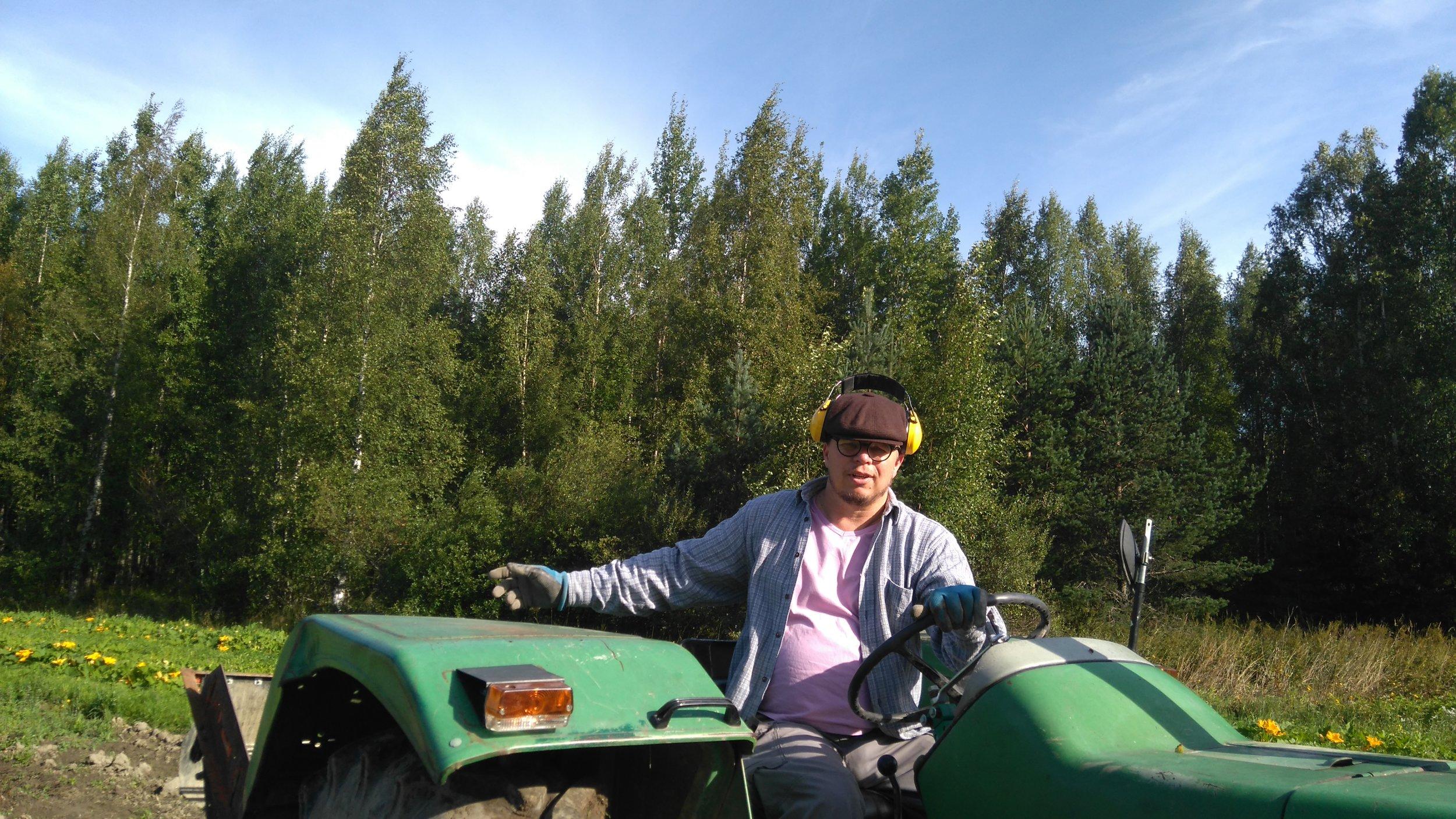 Pentti traktoritöissä & kurpitsan kukat taustalla