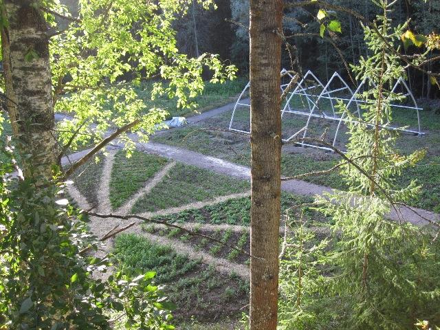 Mustosen puutarha