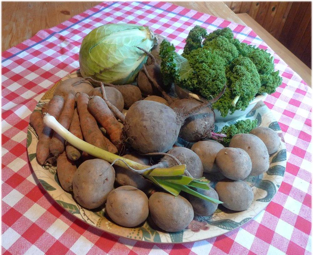 5.11.2013: purjo 29 g, valkokaali 1036 g, lehtikaali 119 g, punajuuret 1098 g, perunat 2028 g, porkkanat 565 g ja palsternakka 57 g.
