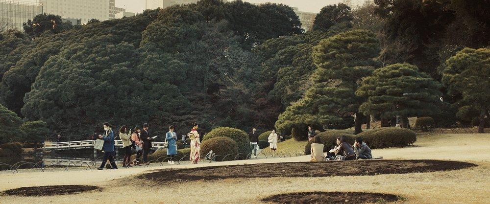 Tokyo_1.13.1.jpg