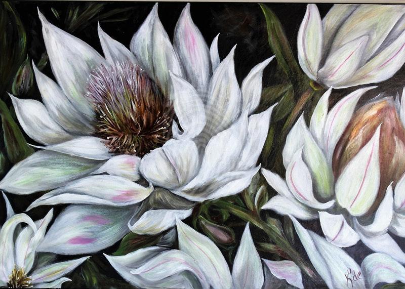 bridal-flower-kathryn-deboer-ipsen-bluethumb-art-ef93.jpeg
