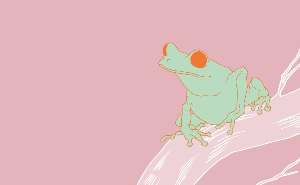 Etsy-Banner---Nine-Arrow---Green-Frog.png