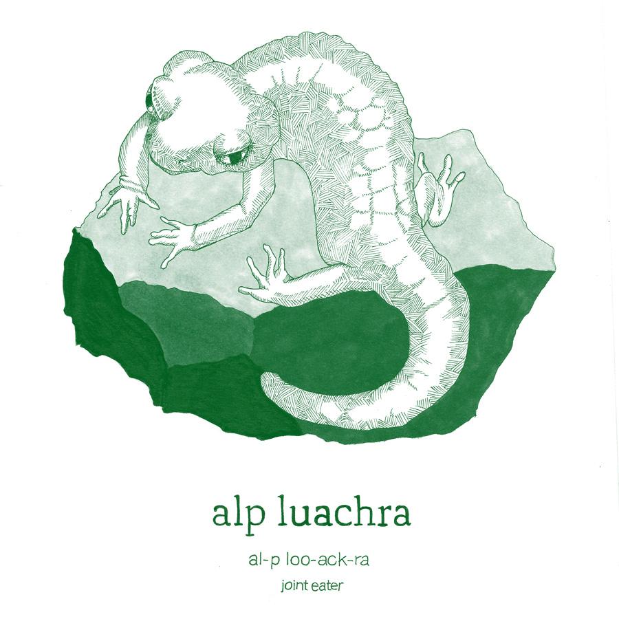5 alp-luachra.jpg