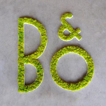 BO-01-350x350.jpg