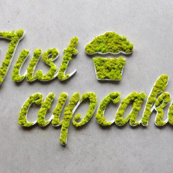 Just-Cupcakes-01-350x350.jpg