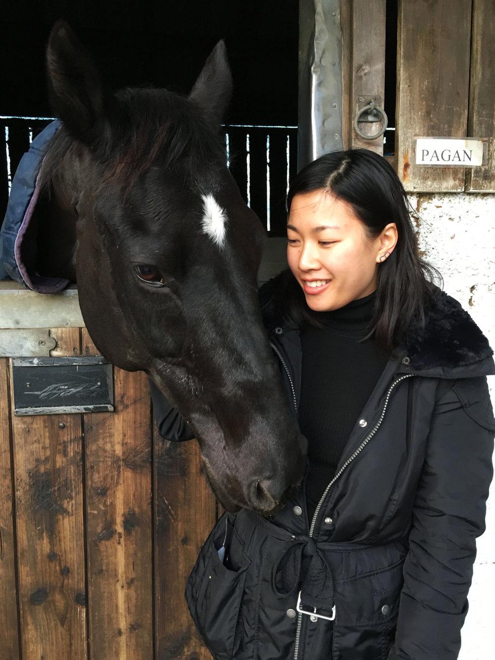 Lozidaze_Cotswolds_Horse_02