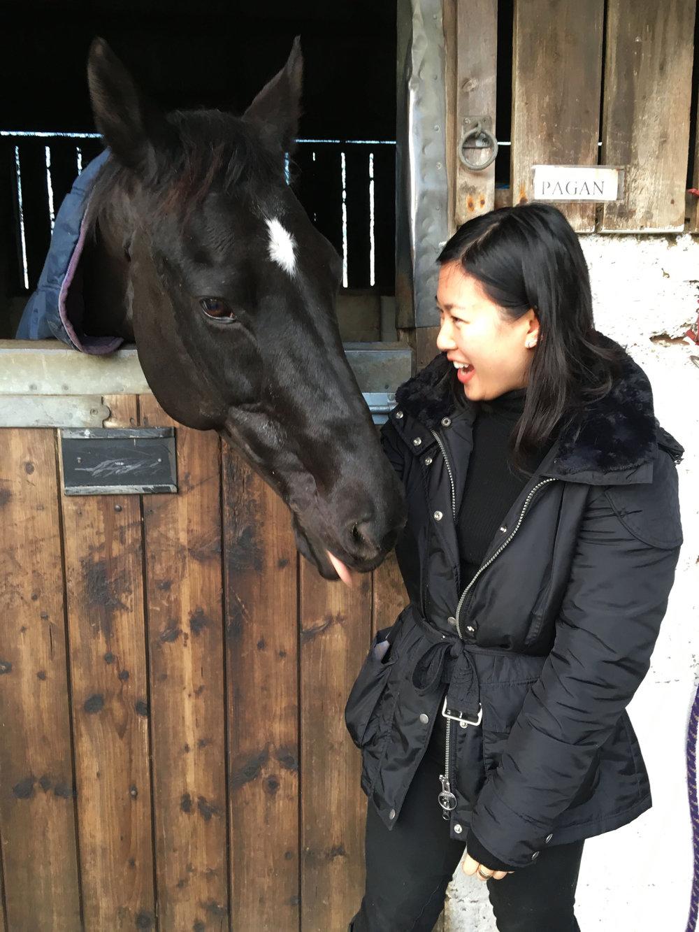 Lozidaze_Cotswolds_Horse_01