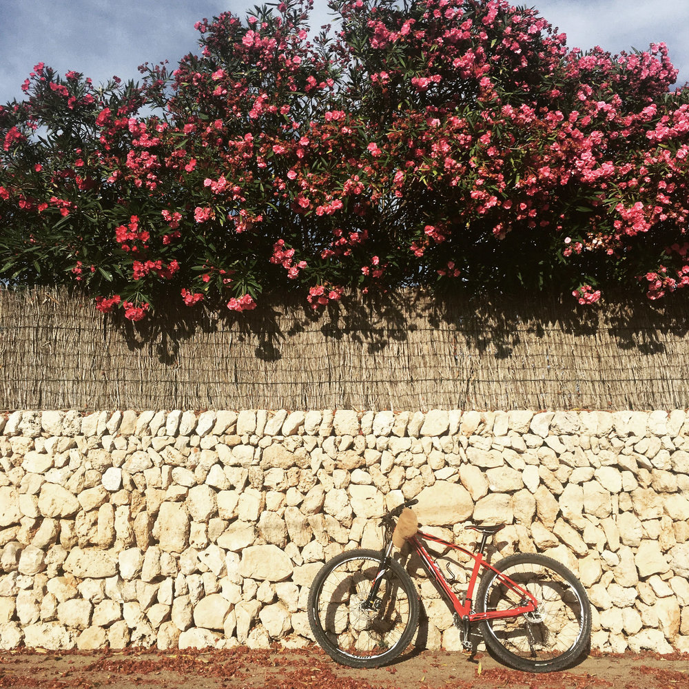 Lozidaze_Menorca-Bike_01