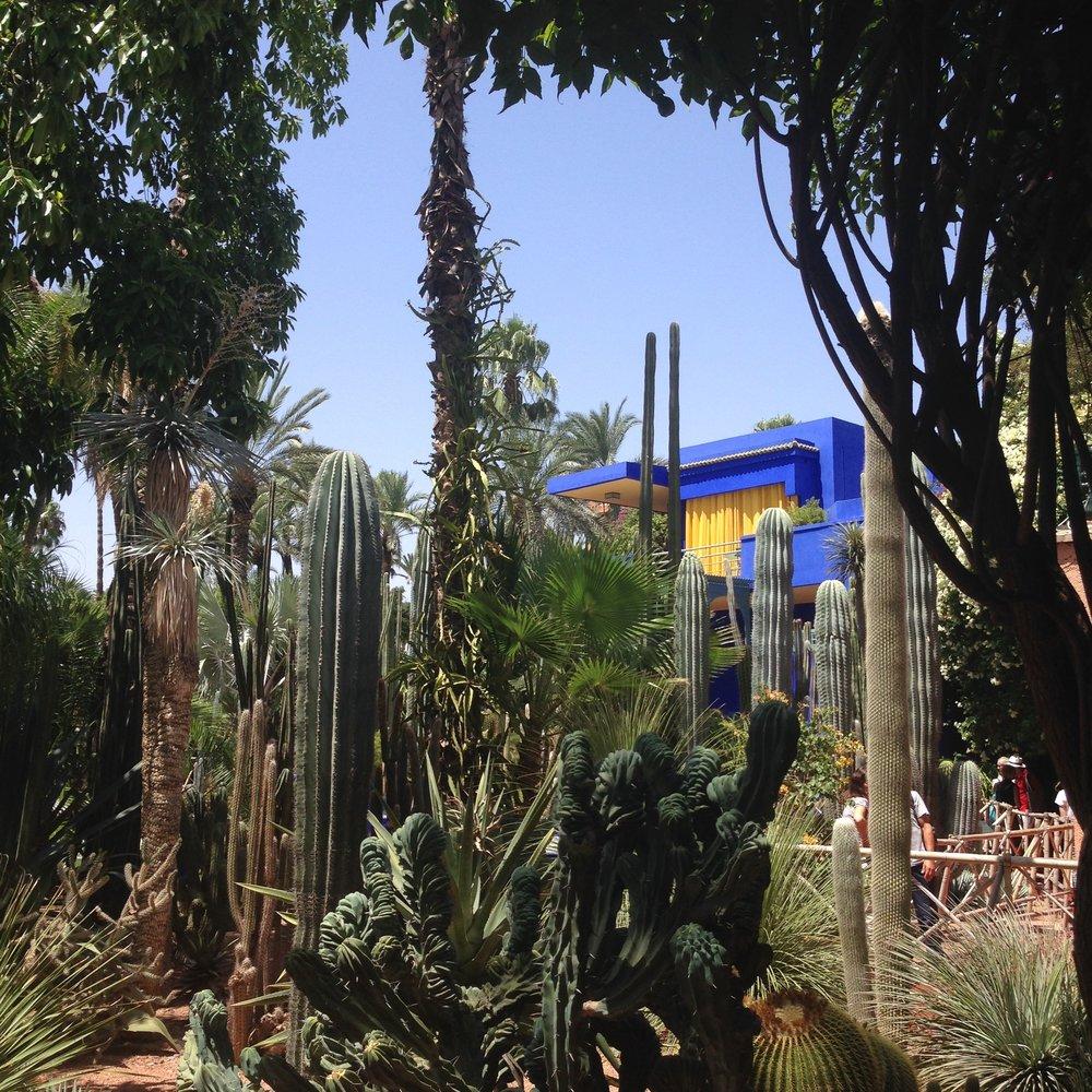 Lozidaze_Marrakesh_Jardin-Majorelle_01