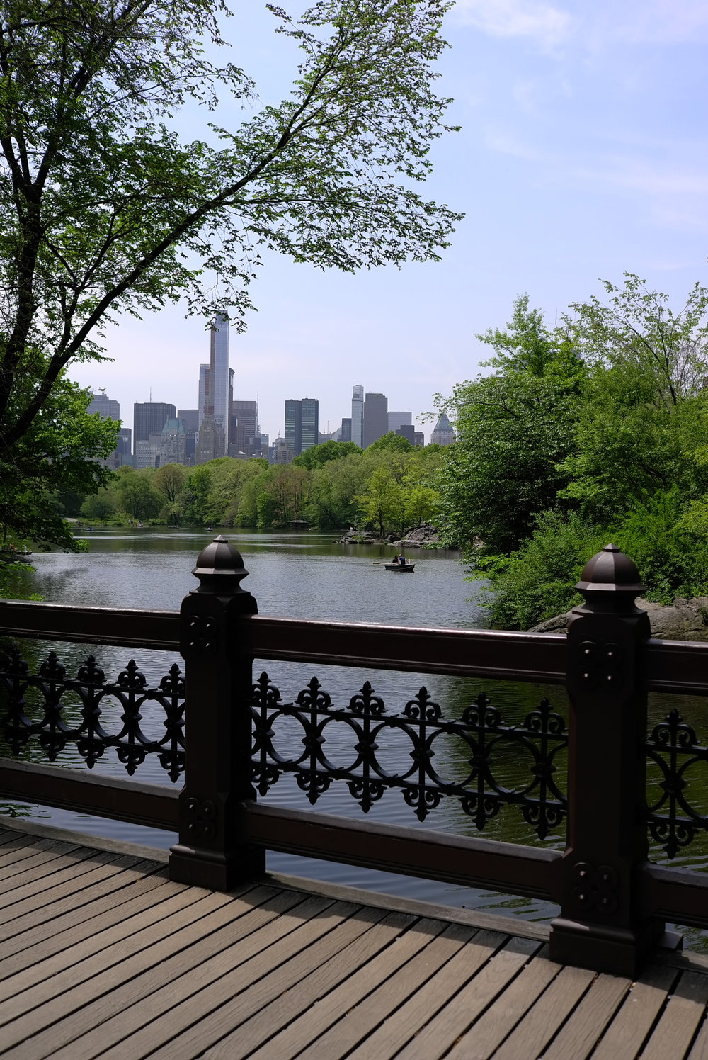 Lozidaze_NYC_Central-Park_01