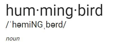 1228-hummingbird.jpg