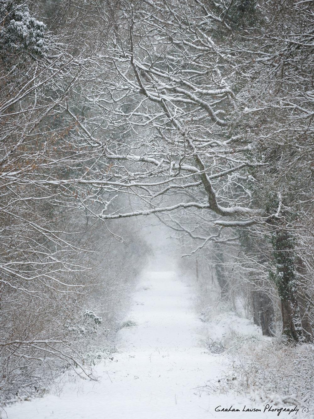 Winter Returns