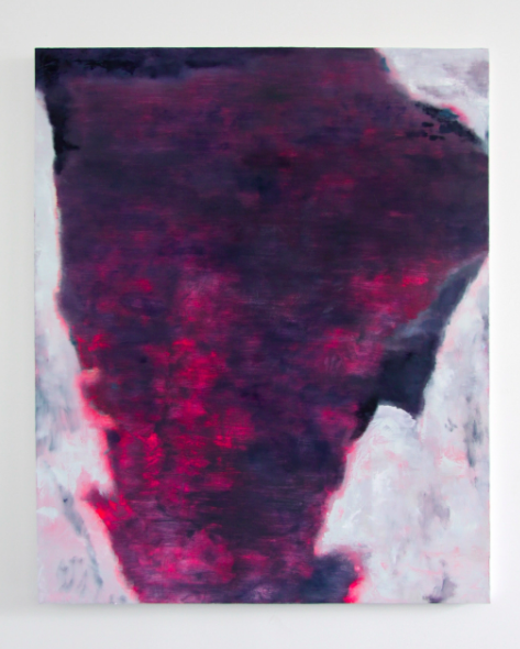 Untitled (Phantom), 2014, oil on canvas, 64 x 52 inches