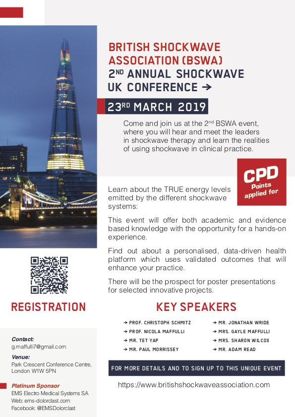 Shockwave UK 4th Conference