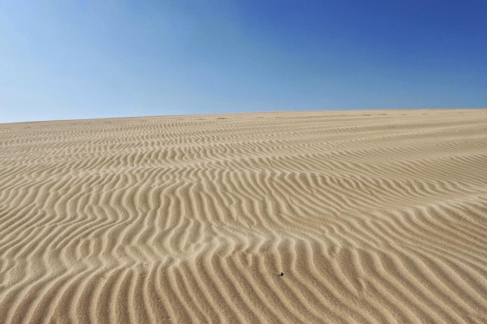 desert-1712090_1280.jpg