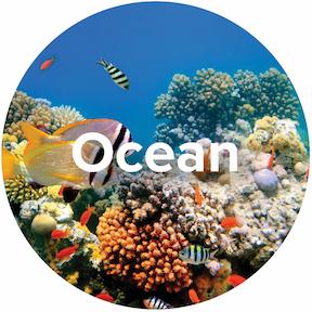 Ecosystem-Oceans-Icon.jpg