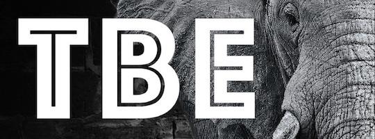 TBE-Logo-Medium.jpg