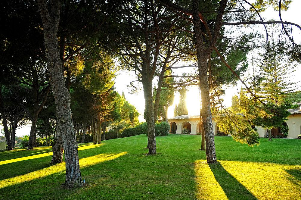 Vilalara Thalassa Resort gardens 1.jpg